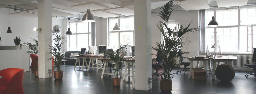 The Latest Office Design Trends and Changes